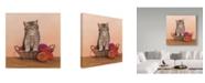 "Trademark Global Janet Pidoux 'Kitten And Wool Basket' Canvas Art - 35"" x 35"""