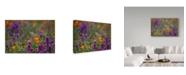 "Trademark Global Janice Sullivan 'Poppies Purple Foreground' Canvas Art - 32"" x 22"""