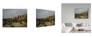 "Trademark Global J.D. Mcfarlan 'Needles Hwy, Sd 2' Canvas Art - 32"" x 24"""
