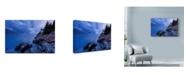 "Trademark Global Michael Blanchette Photography 'Blue Knight' Canvas Art - 32"" x 22"""