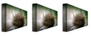 "Trademark Global Lois Bryan 'Wild Thing' Canvas Art - 32"" x 22"""
