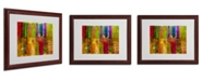 "Trademark Global Michelle Calkins 'Color Abstract' Framed Matted Art - 20"" x 16"""