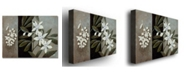 "Trademark Global Rio 'White Fresh' Canvas Art - 32"" x 26"""