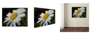 "Trademark Global Monica Fleet 'Dynamic Beauty' Canvas Art - 32"" x 24"""