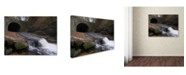 "Trademark Global Monica Fleet 'Monotonous Beauty' Canvas Art - 32"" x 24"""