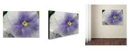 "Trademark Global Monica Fleet 'Untainted Purity' Canvas Art - 32"" x 24"""