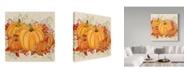 """Trademark Global Jean Plout 'Fall Pumpkins' Canvas Art - 14"""" x 14"""""""