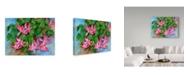 "Trademark Global Joanne Porter 'Christmas Cactus' Canvas Art - 14"" x 19"""