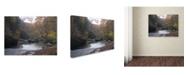 """Trademark Global Monica Fleet 'Prosaic' Canvas Art - 14"""" x 19"""""""