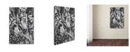 "Trademark Global Jason Shaffer 'Corn Field 2' Canvas Art - 16"" x 24"""