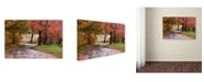 "Trademark Global Jason Shaffer 'Forgotten Vermilion' Canvas Art - 24"" x 16"""