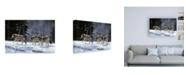 "Trademark Global R W Hedge Six Pack Minus Three Canvas Art - 27"" x 33.5"""