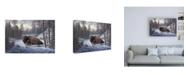 "Trademark Global R W Hedge The Guardian Buffalo Canvas Art - 19.5"" x 26"""