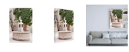 "Trademark Global Philippe Hugonnard France Provence Provencal Fountain Canvas Art - 19.5"" x 26"""