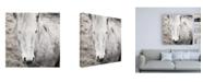 "Trademark Global Laura Marshall Heida IV BW Canvas Art - 36.5"" x 48"""