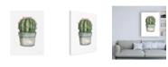 "Trademark Global Lisa Audit Mixed Greens Succulent II Canvas Art - 27"" x 33.5"""