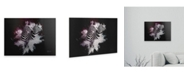 """Trademark Global Philippe Hugonnard Wild Explosion Collection - the Zebras Floating Brushed Aluminum Art - 21"""" x 25"""""""