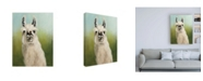 "Trademark Global Julia Purinton Whos Your Llama I Green Canvas Art - 19.5"" x 26"""