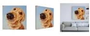 """Trademark Global Lucia Hefferna Follow Your Nose 4 Canvas Art - 15.5"""" x 21"""""""