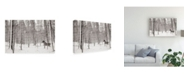 "Trademark Global James Mcloughlin A Snowy Walk II Canvas Art - 15"" x 20"""