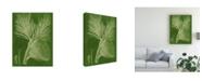 "Trademark Global Vision Studio Modern Pine III Canvas Art - 20"" x 25"""