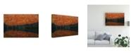 "Trademark Global Sho Shibata Shadow Fade Away Canvas Art - 20"" x 25"""