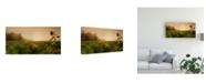 "Trademark Global Julia Shepeleva Misty Morning Flower Canvas Art - 20"" x 25"""