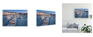 "Trademark Global John Fan Bisti Blue Canvas Art - 20"" x 25"""