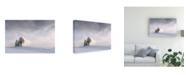 "Trademark Global Nina Pauli Silent Winter Canvas Art - 37"" x 49"""