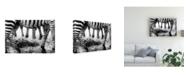 "Trademark Global Mohammed Alnaser Savannah Contrast Canvas Art - 20"" x 25"""