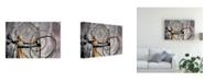 "Trademark Global Monte Nagler Silver and Gold Scottsdale Arizona Color Canvas Art - 20"" x 25"""