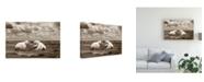 "Trademark Global Monte Nagler Two Polar Bears Coast Line Canvas Art - 20"" x 25"""