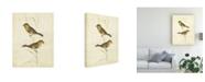 """Trademark Global Cassin Goldfinch Birds Canvas Art - 15"""" x 20"""""""