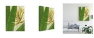 "Trademark Global Pablo Esteban Tall Wide Palm Canvas Art - 36.5"" x 48"""