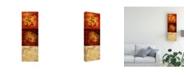 "Trademark Global Pablo Esteban Stencils Over Red Tones 3 Canvas Art - 19.5"" x 26"""