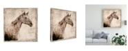 "Trademark Global Irena Orlov White Horse I Illustration Canvas Art - 19.5"" x 26"""