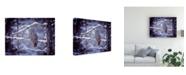 "Trademark Global PH Burchett Owl in the Snow II Canvas Art - 15.5"" x 21"""