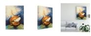 "Trademark Global Peter Potter Harrisburg Fukushima Canvas Art - 19.5"" x 26"""