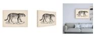 """Trademark Global Brodtmann Brodtmann Male Leopard Canvas Art - 15.5"""" x 21"""""""