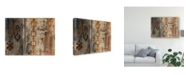 "Trademark Global Silvia Vassileva Southwest Design II Canvas Art - 20"" x 25"""