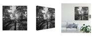 "Trademark Global Martin Henson Woodland Tones I Canvas Art - 27"" x 33"""