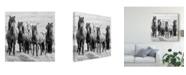 "Trademark Global PH Burchett Black and White Horses VIII Canvas Art - 15"" x 20"""
