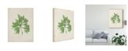 "Trademark Global Vision Studio Peridot Seaweed I Canvas Art - 20"" x 25"""