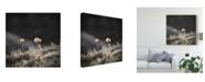 "Trademark Global Christine Sainte-Laudy Fragile Nature Canvas Art - 15"" x 20"""