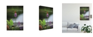 "Trademark Global Christine Sainte-Laudy Cluster Bells Canvas Art - 20"" x 25"""