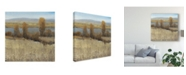 "Trademark Global Tim Otoole River Valley II Canvas Art - 20"" x 25"""