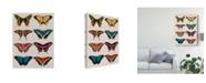 "Trademark Global Vision Studio Polychrome Butterflies I Canvas Art - 20"" x 25"""