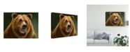 "Trademark Global Patrick Lamontagne Grizzly Totem Canvas Art - 20"" x 25"""