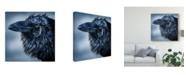 "Trademark Global Patrick Lamontagne Blue Beak Raven Canvas Art - 20"" x 25"""