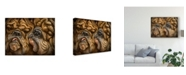 "Trademark Global Patrick Lamontagne Wrinkles Illustration Canvas Art - 15"" x 20"""